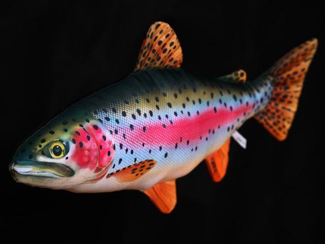 Soft plīša foreles (varavīksnes) 62cm