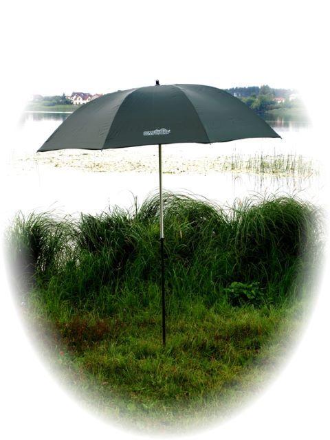 Umbrella C-050443
